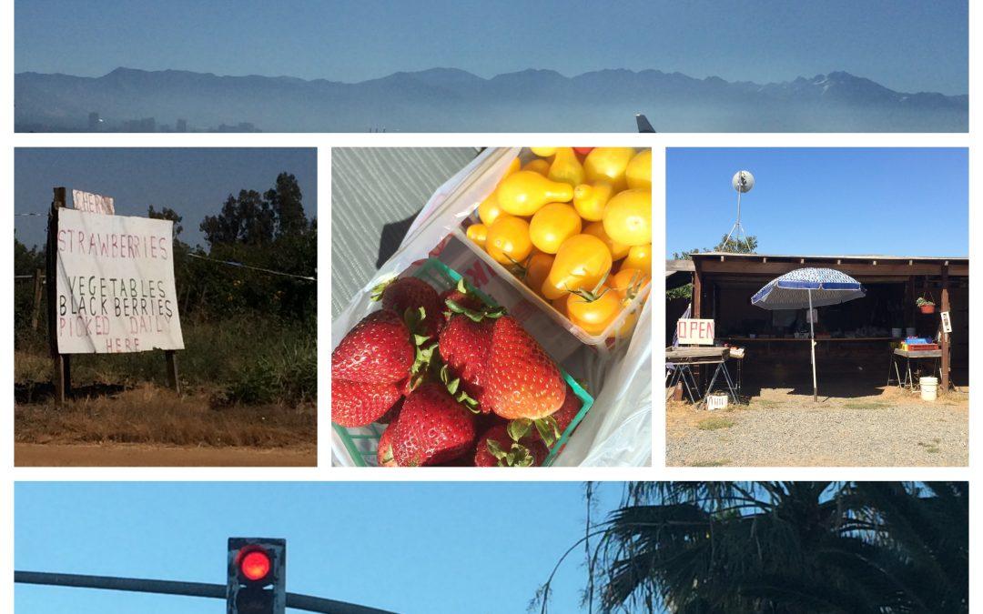 72 Hours Chico California