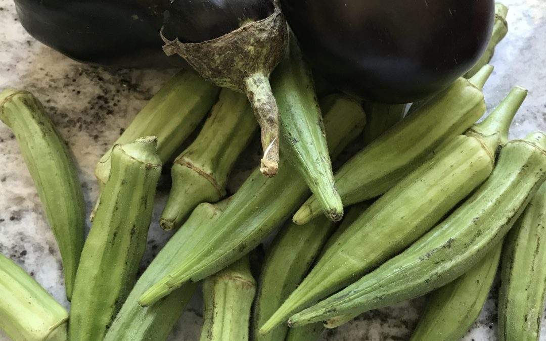 Simple Eggplant Okra Curry
